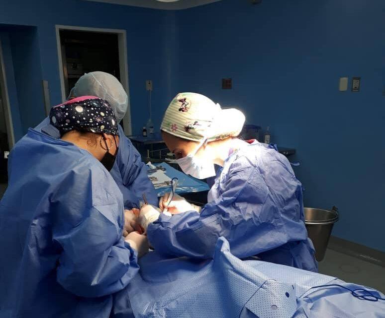 Yaracuy: Pueblo Sano alcanza la cifra de 100.860 intervenciones quirúrgicas