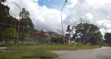 Mérida bajo la desidia de sus autoridades que no hacen nada  para librarla de la maleza